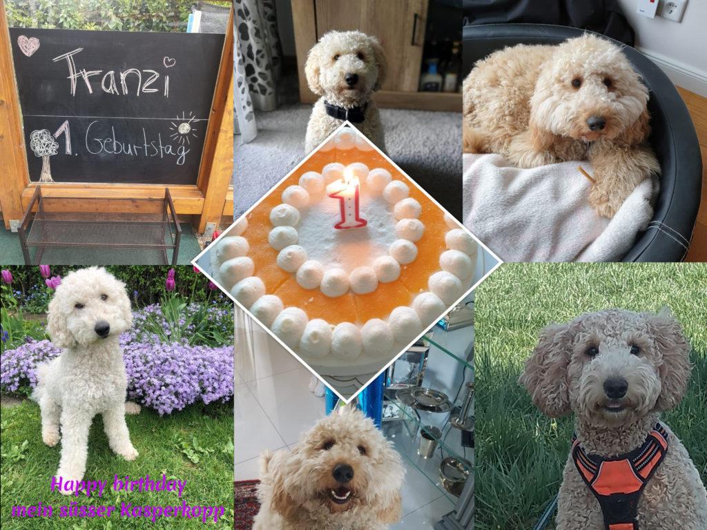 Collage Ronjas Geburtstag